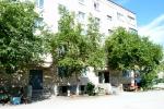 Вклад жильцов в благоустройство двора на Пушкина. Фото_11