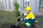 Работники цемзавода участвуют в экологическом субботнике. Фото_2