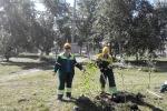 Работники цемзавода участвуют в экологическом субботнике. Фото_3