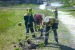 Работники цемзавода участвуют в экологическом субботнике. Фото_4