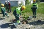 Работники цемзавода участвуют в экологическом субботнике. Фото_5