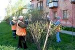 Работы по озеленению работниками управляющей компании